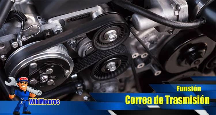 Imagen de Correas 3