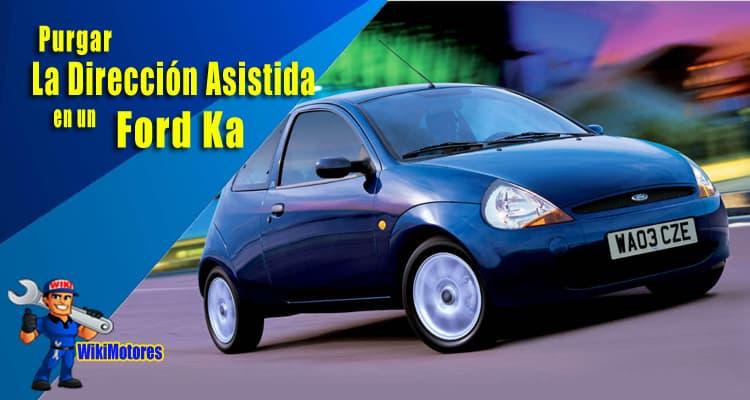 Purgar La Direccion Asistida En Un Ford Ka 1